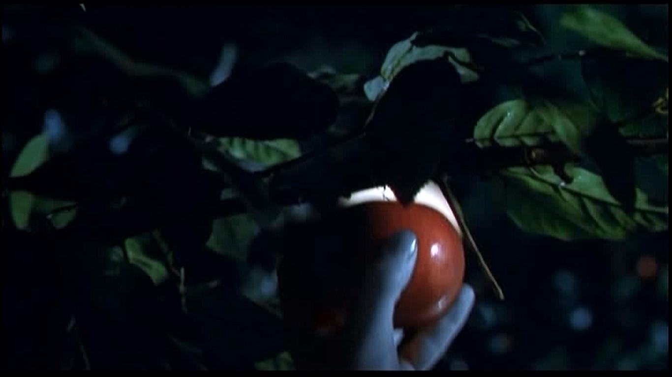 木からリンゴをもぎとるマーガレット